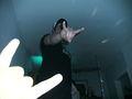 BlackFriday - Fotoalbum