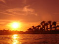 seadiver - Fotoalbum