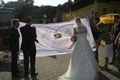Hochzeitsfotos Lepperdinger 44690769