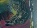 Nightmaus15 - Fotoalbum