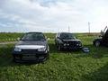 VW/Audi Treffen 44814757