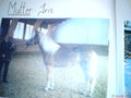 -----lisa----- - Fotoalbum