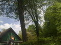 Wörthersee 2010 73521110