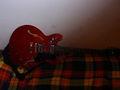 Gita_Rocker - Fotoalbum