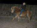 cowgirl85 - Fotoalbum