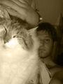 Soulfly15 - Fotoalbum